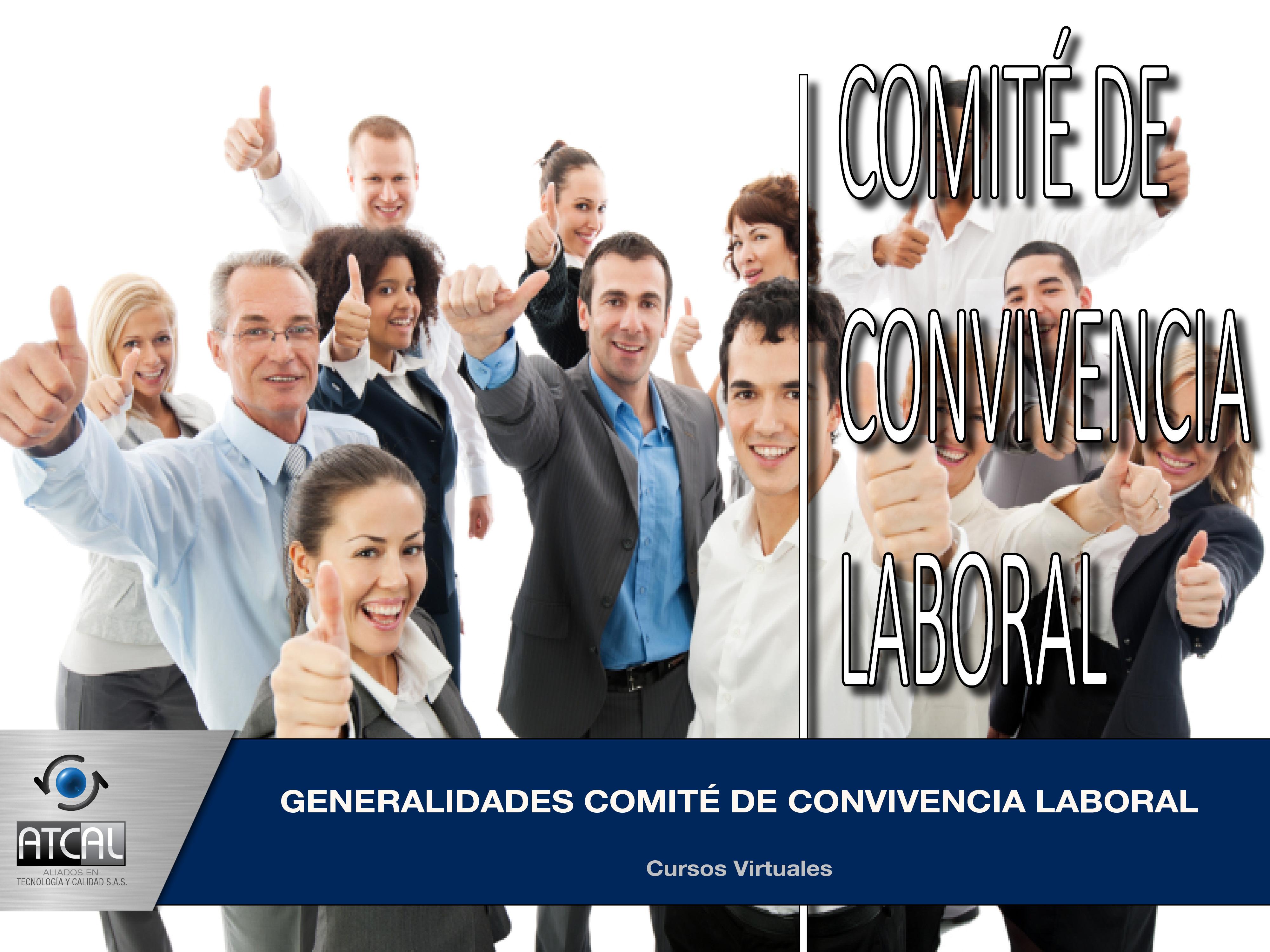 Generalidades Comité de Convivencia Laboral