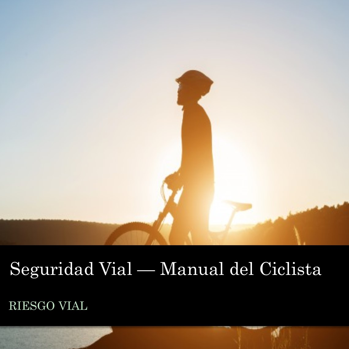Seguridad Vial - Manual del Ciclista