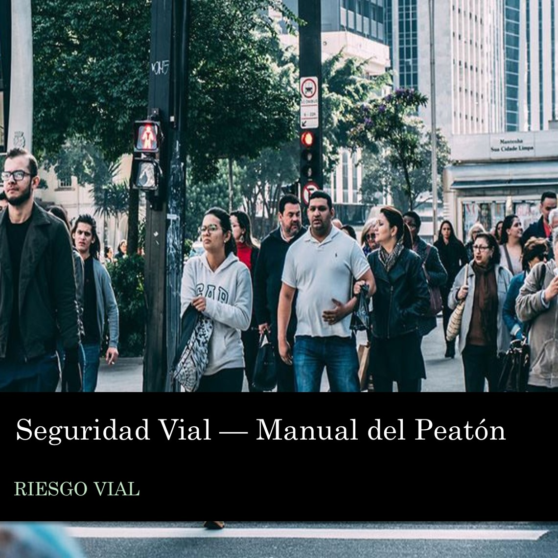 Seguridad Vial - Manual Peatón