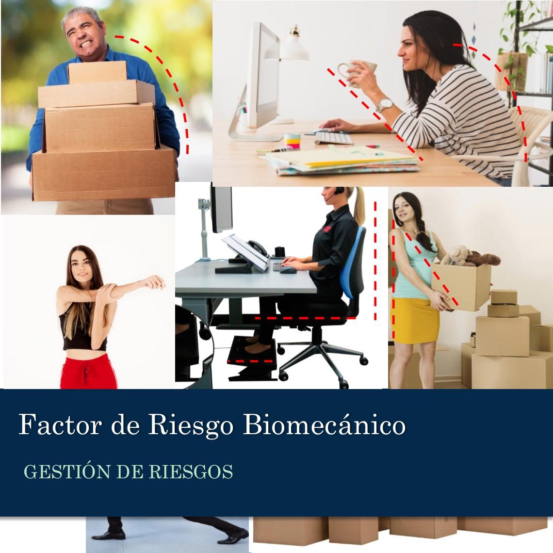Factor de Riesgo Biomecánico